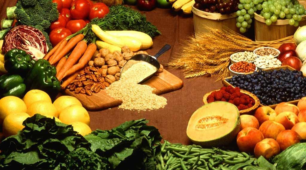sunde-proteiner